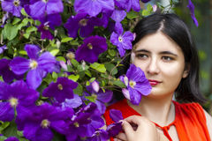 The girl in the flowers. Beautiful picture : the girl in the flowers Royalty Free Stock Photo