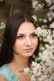 Girl in flowers of cherry Stock Photos