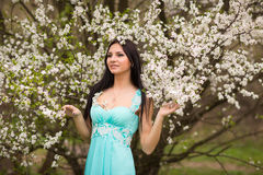 Girl in flowers of cherry Stock Photo