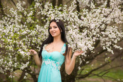 Girl in flowers of cherry Stock Photography