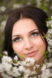 Girl in flowers of cherry Royalty Free Stock Photo