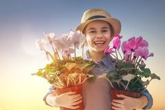 Girl with flowers in pots Stock Photography