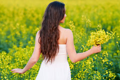Girl with flowers at summer field Royalty Free Stock Image