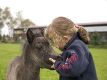 Girl with foal Stock Image