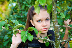 The girl among foliage Stock Photography