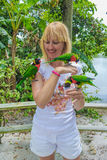 Woman feeding three parrots Royalty Free Stock Images