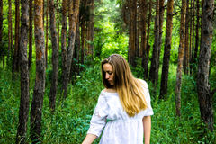 Girl in the forest Stock Image