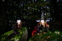 Girl in the forest dressed Halloween witch costume Royalty Free Stock Photos
