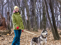 Girl in the forest with her husky dog. Beautiful girl in the woods with a dog Husky breed. Autumn Stock Images