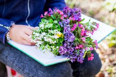 A girl in the forest in the spring with a book and a bouquet of flowers. Rest in the forest_ royalty free stock image