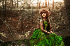 Girl in forest at sunset. Sitting in a tree Royalty Free Stock Photos