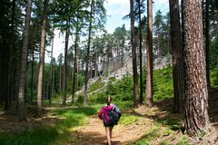 A girl in the forrest. A walking girl in the forrest - Czech republic, Europe stock images