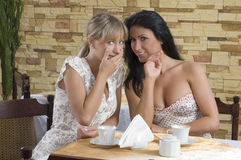 Girl friends chatting Stock Image