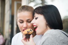 Girl friends eat blueberry muffin in paris, france. Girl friends eat blueberry muffin in paris france. Hunger temptation, appetite concept. Dessert food, snack Stock Image