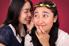 Girl friends funny story Royalty Free Stock Photography