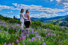 Girl friends hiking in meadows full bloom. stock photo