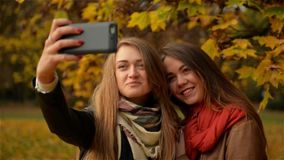 Girl Friends Making Selfie in the Autumn Park. Two Beautiful Young Women Photographing on a Smartphone stock video footage