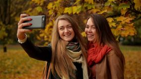 Girl Friends Making Selfie in the Autumn Park. Two Beautiful Young Women Photographing on a Smartphone. Outdoor stock footage