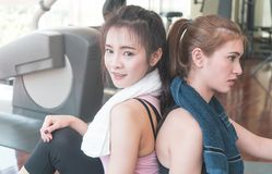 Girl friends is sitting back to back Fitness gym resting from hard work out. Girl friends is sitting back to back in Fitness gym resting from hard work out Stock Photography