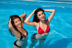 Girl-friends in the swimming-pool Stock Photography