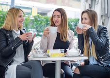 Three happy girl friends Royalty Free Stock Images