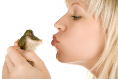 Girl and Frog prince. Frog prince being kissed by a beautiful blond girl isolated on white Royalty Free Stock Image