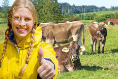 Girl in front of cattles Royalty Free Stock Images