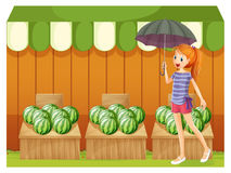 A girl in front of the watermelons Stock Image