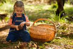 Girl with fungi. A little girl with a basket and fungi stock photos