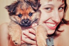 Girl with a funny dog Stock Photo