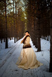 Girl in a fur coat and lush vintage dress in winter forest Royalty Free Stock Image