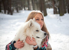 Girl with samoed dog Royalty Free Stock Image