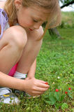 Girl in the garden royalty free stock images