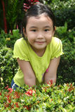 Girl at the garden Stock Images