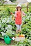 Girl in garden. Young nice girl working in vegetable garden stock photo