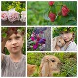 Girl in garden royalty free stock image