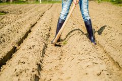 Girl in the garden. Digging potatoes Stock Photo