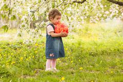 Girl in the garden Royalty Free Stock Photography