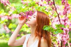 Girl in the garden. Stock Image