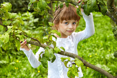 Girl in a garden  the spring afternoon Royalty Free Stock Photography