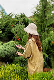 Girl gardener in working clothes and straw hat cuts garden scissoors evergreen Royalty Free Stock Photography