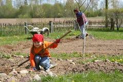Girl gardening. In the flower bed wheelbarrow in background Stock Photo