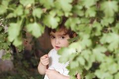 Girl gathering berries Royalty Free Stock Image