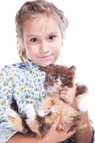 Girl gently embracing tortoise British kitten. Vertical portrait of lovely girl with brown eyes gently embracing tortoise British kitten on isolated white Stock Photos