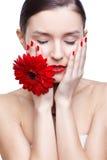 Girl with gerbera flower Stock Image