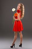 Girl with gerbera flower. In studio Stock Photos