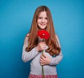 Girl with gerbera Stock Photos