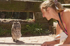 Girl gets closer to owl on floor Royalty Free Stock Photos