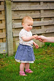 Girl getting the flower Royalty Free Stock Images