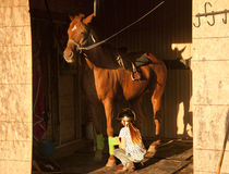 Girl getting her horse saddled and ready to ride Stock Images